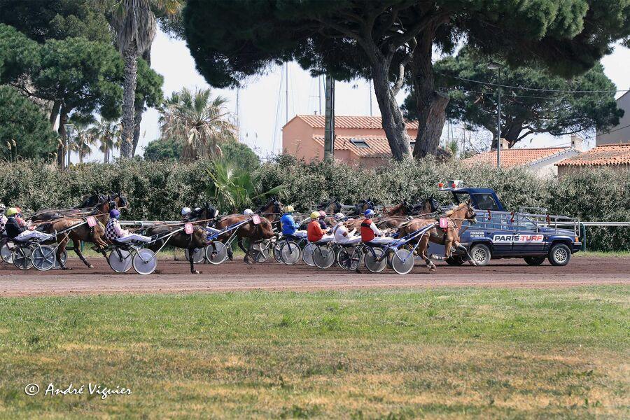 Courses hippiques à l'hippodrome d'Hyères à Hyères - 8