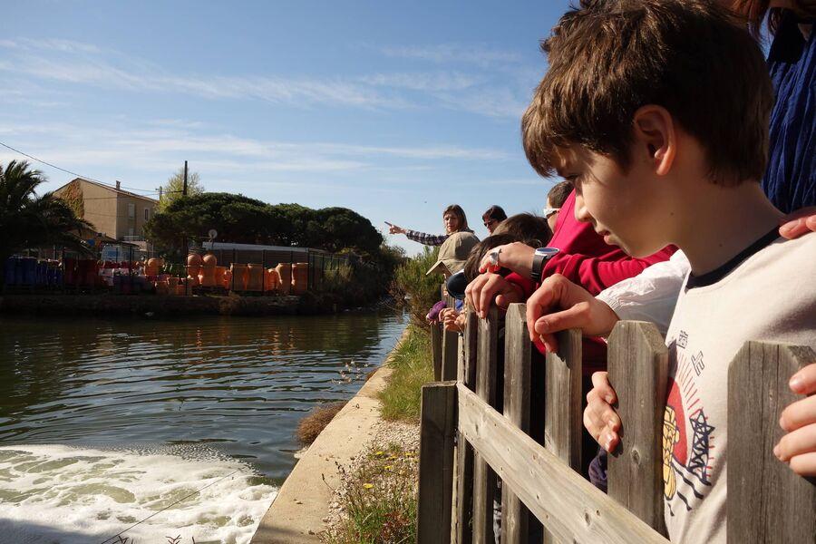 Au pays du sel (visite guidée spécial enfants) à Hyères - 0