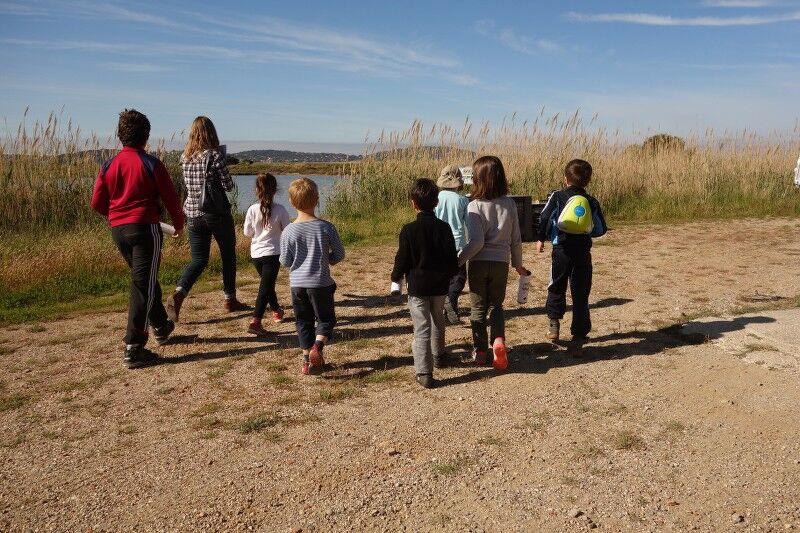 Au pays du sel (visite guidée spécial enfants) à Hyères - 3
