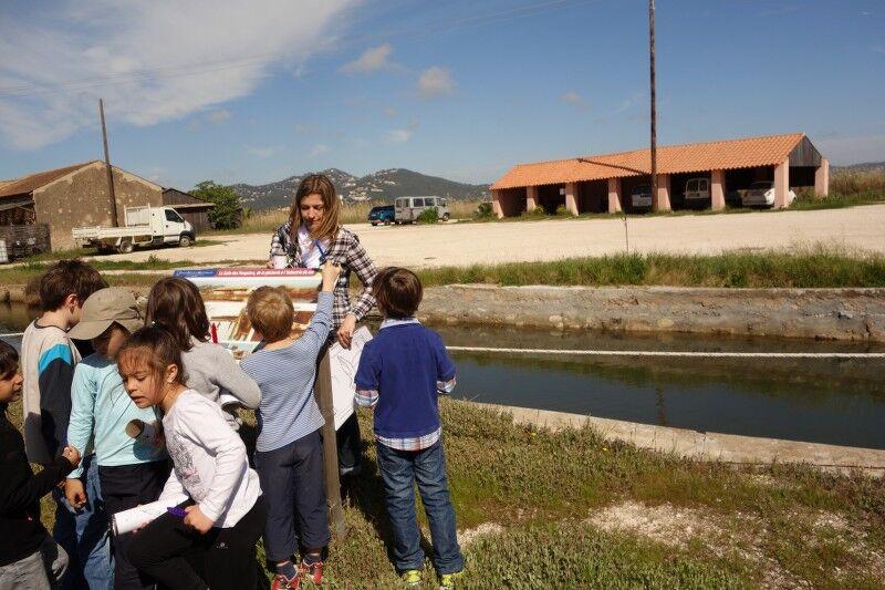 Au pays du sel (visite guidée spécial enfants) à Hyères - 12