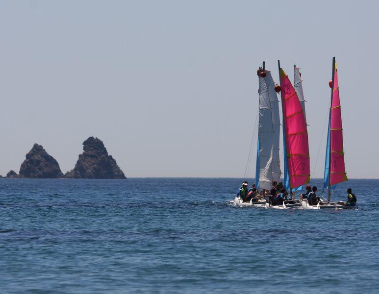 Régate : Championnat de ligue d'optimist à La Seyne-sur-Mer - 0