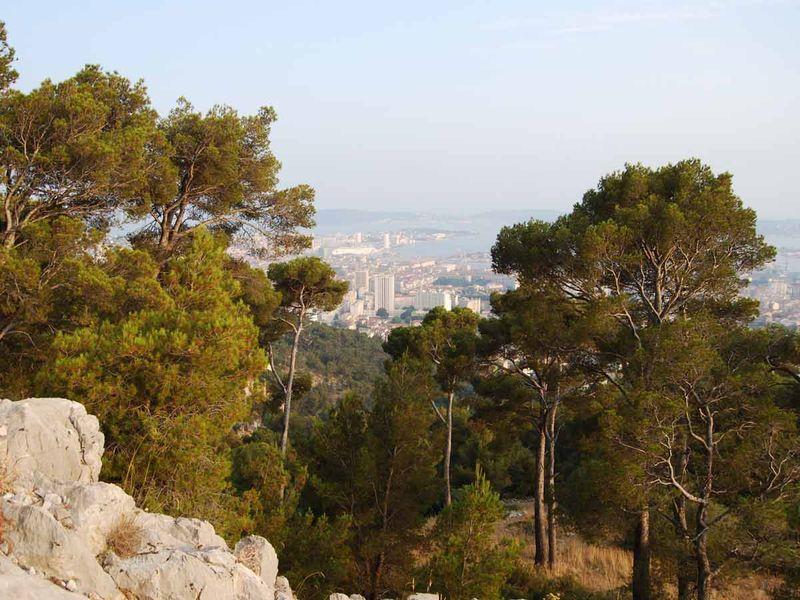 Sous la lune et les étoiles à Toulon - 2