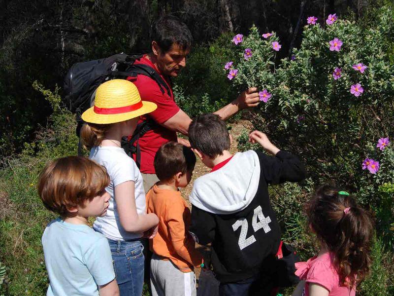 Reprise – Jeune public / Les petits explorateurs de la colline – Sortie nature à Toulon - 1