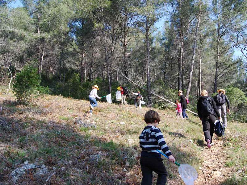Reprise – Jeune public / Les petits explorateurs de la colline – Sortie nature à Toulon - 3