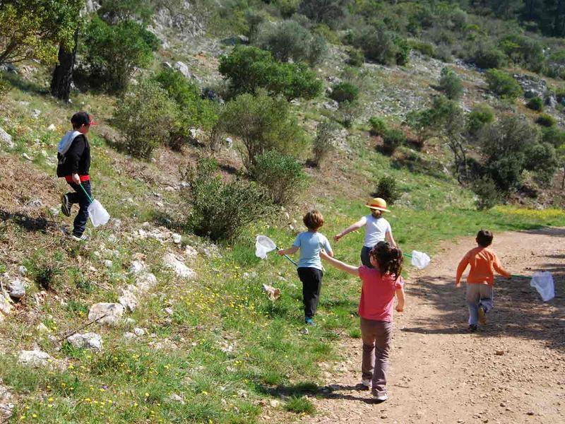 Reprise – Jeune public / Les petits explorateurs de la colline – Sortie nature à Toulon - 0
