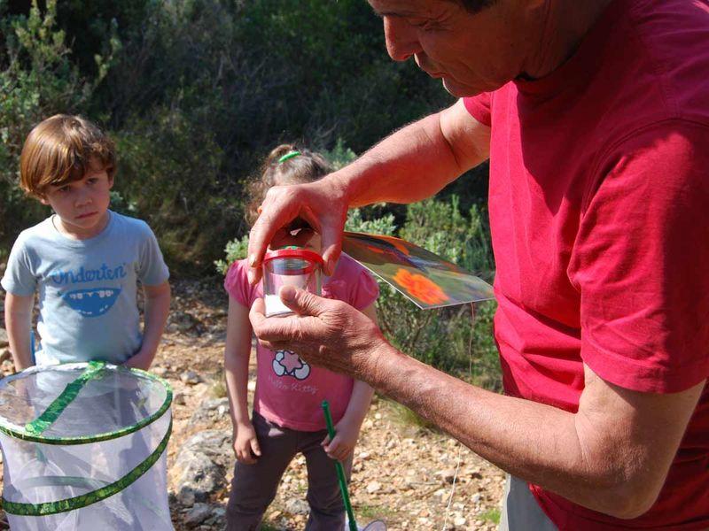Reprise – Jeune public / Les petits explorateurs de la colline – Sortie nature à Toulon - 2