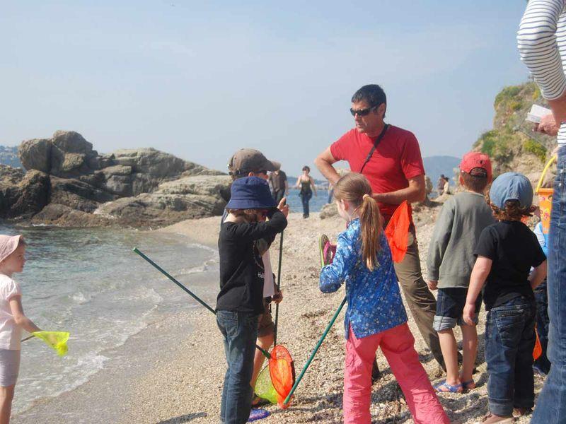 Reprise – Jeune public / Les petits explorateurs du littoral – Sortie nature à Toulon - 0