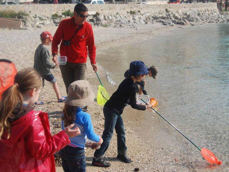 Reprise – Jeune public / Les petits explorateurs du littoral – Sortie nature à Toulon - 2