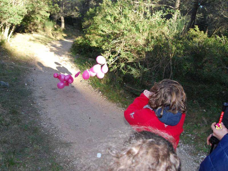 Jeune public – Sortie nature – Les petits aventuriers de la forêt à Toulon - 2