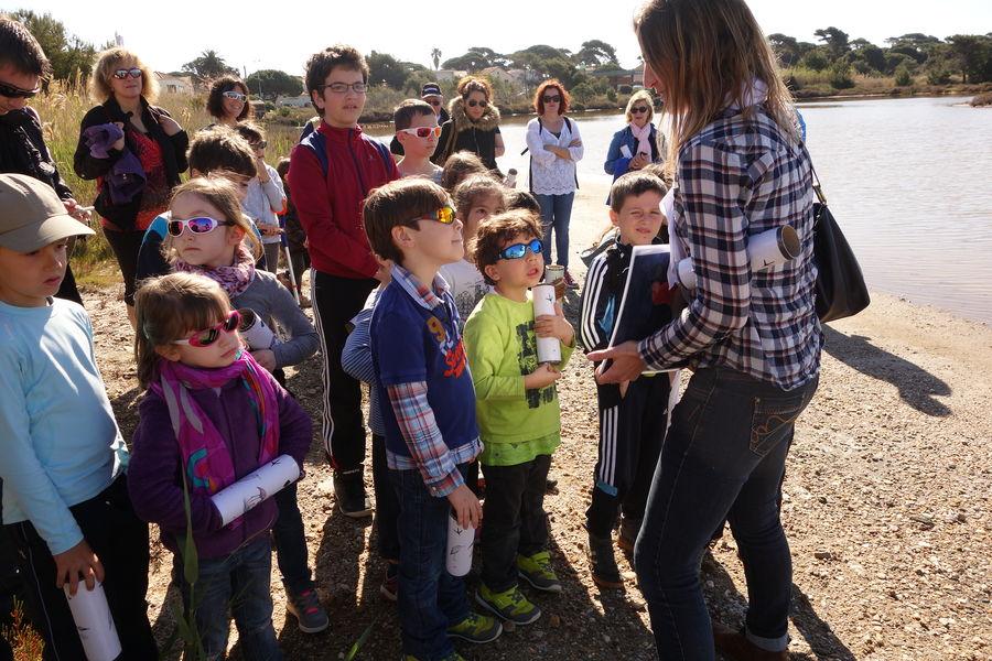 Au pays du sel (visite guidée spécial enfants) à Hyères - 4