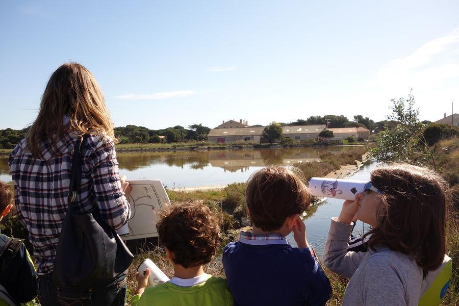Au pays du sel (visite guidée spécial enfants) à Hyères - 6
