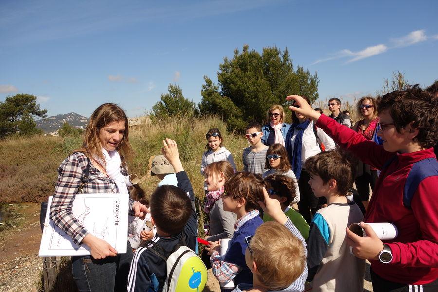Au pays du sel (visite guidée spécial enfants) à Hyères - 9