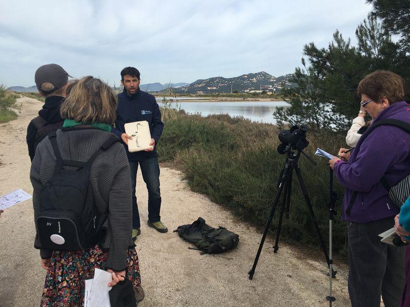 Observation des oiseaux au Salin des Pesquiers avec la LPO à Hyères - 6