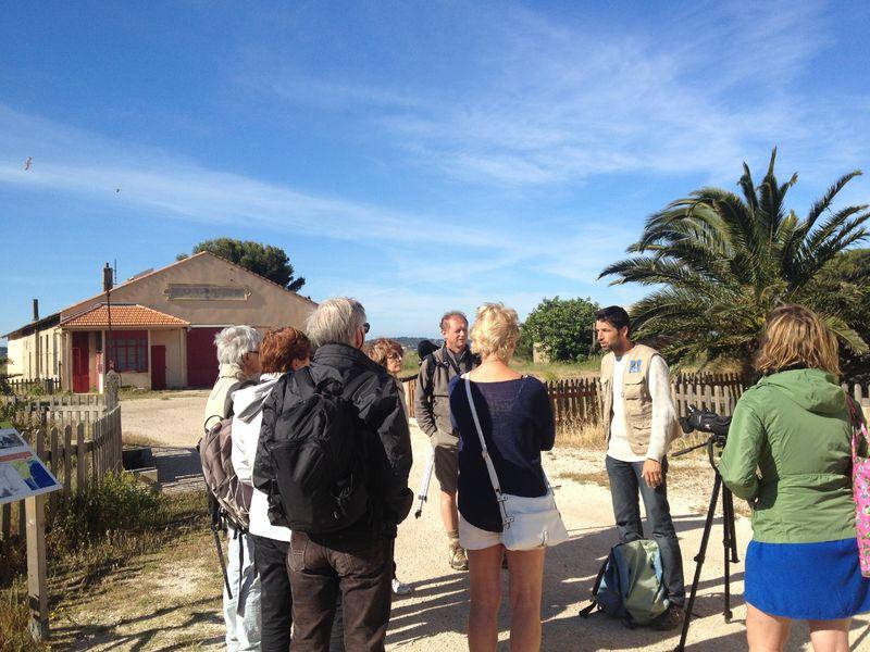 Observation des oiseaux au Salin des Pesquiers avec la LPO à Hyères - 4