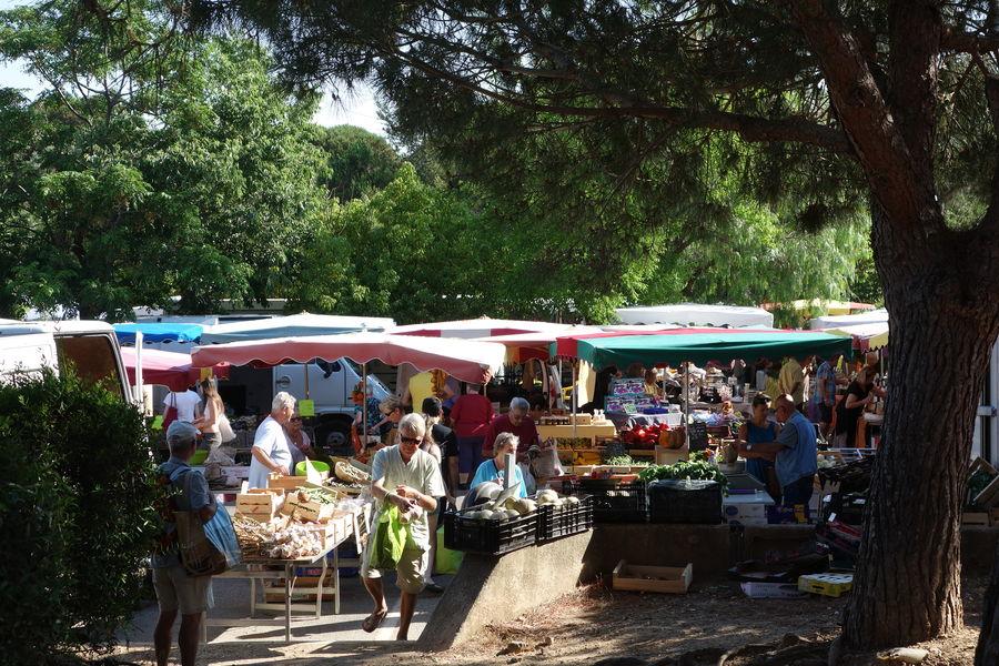 Le marché de Giens à Hyères - 4