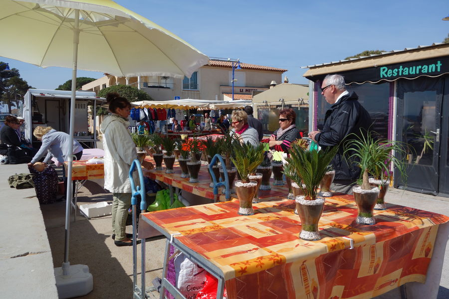 Le marché de l'Ayguade à Hyères - 7