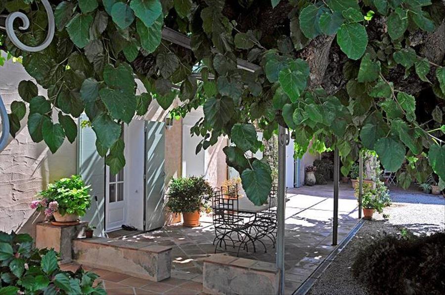 Découverte viticole: domaine Clos Cibonne : visite commentée à Le Pradet - 1