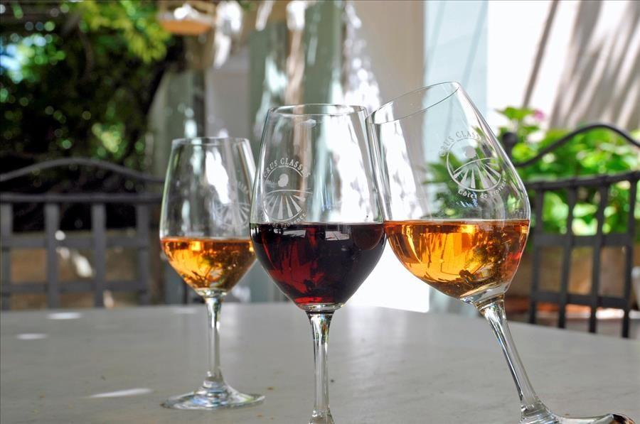 Découverte viticole: domaine Clos Cibonne : visite commentée à Le Pradet - 3