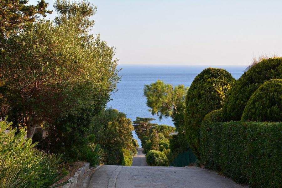 Rendez-vous aux jardins – Île du Levant à Hyères - 2