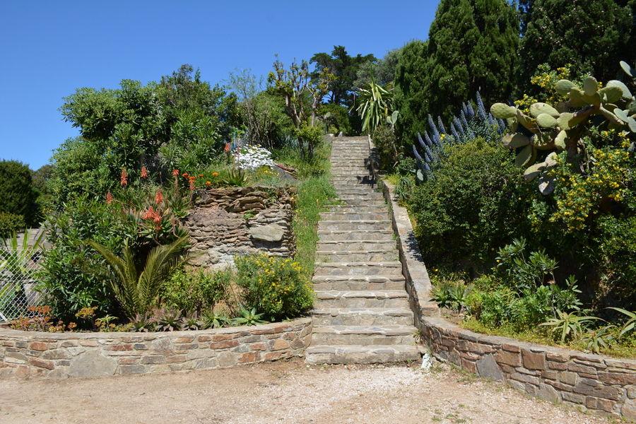 Rendez-vous aux jardins – Île du Levant à Hyères - 4