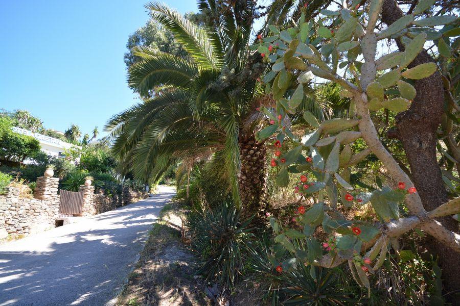 Rendez-vous aux jardins – Île du Levant à Hyères - 7