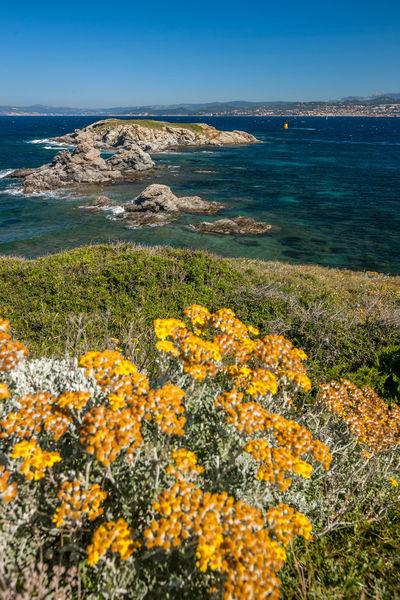 Visite guidée : Les Embiez, l'île au trésor anisé à Six-Fours-les-Plages - 0