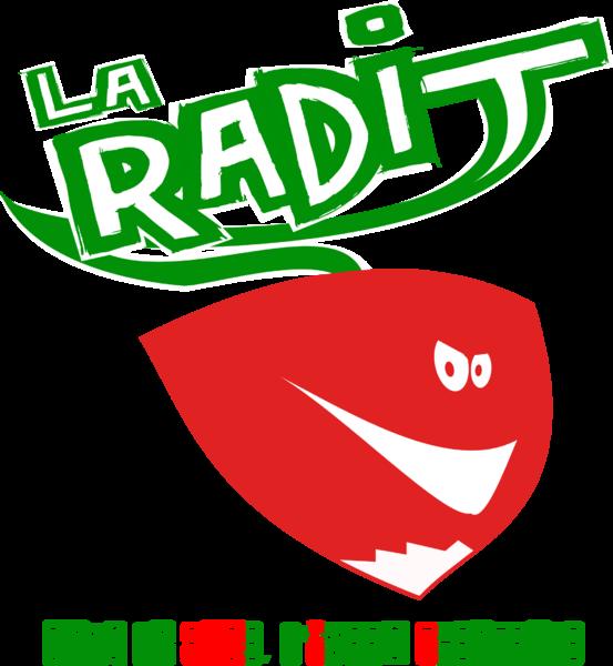Roue de L'impro de La Radit à Toulon - 1