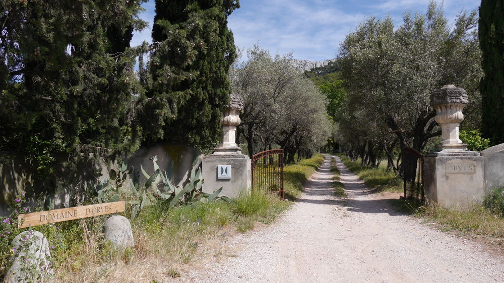 Visite guidée du jardin remarquable du Domaine d'Orvès à La Valette-du-Var - 0