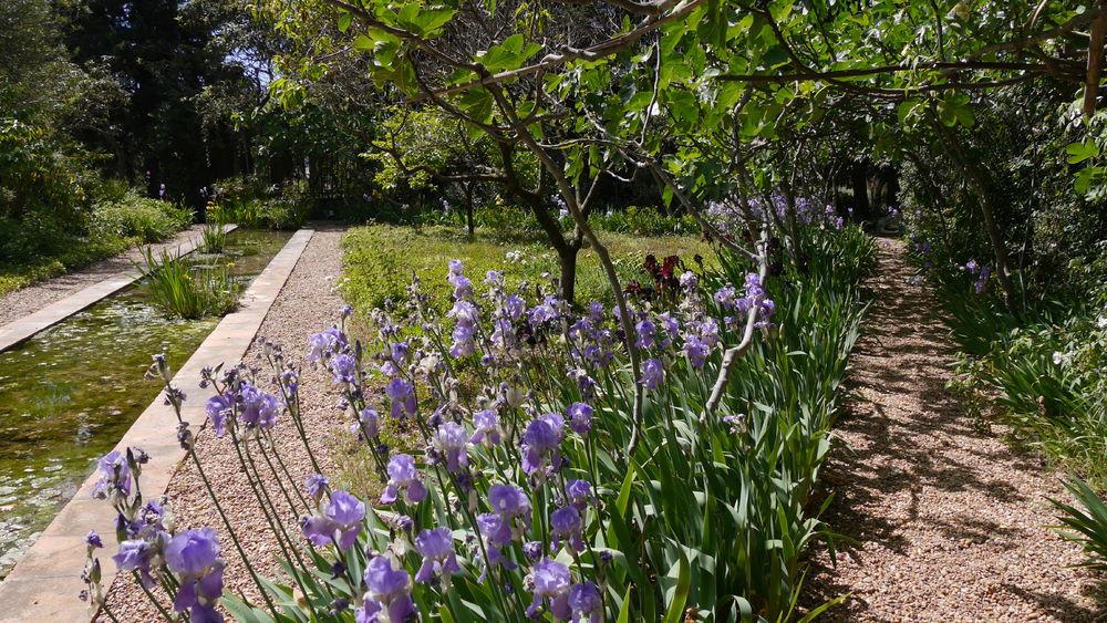 Visite guidée du jardin remarquable du Domaine d'Orvès à La Valette-du-Var - 1