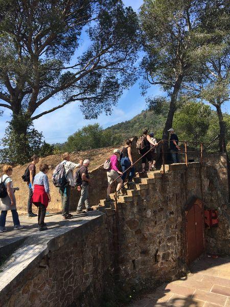 Visite guidée Fort de La Bayarde: Nature et Patrimoine à Carqueiranne - 5