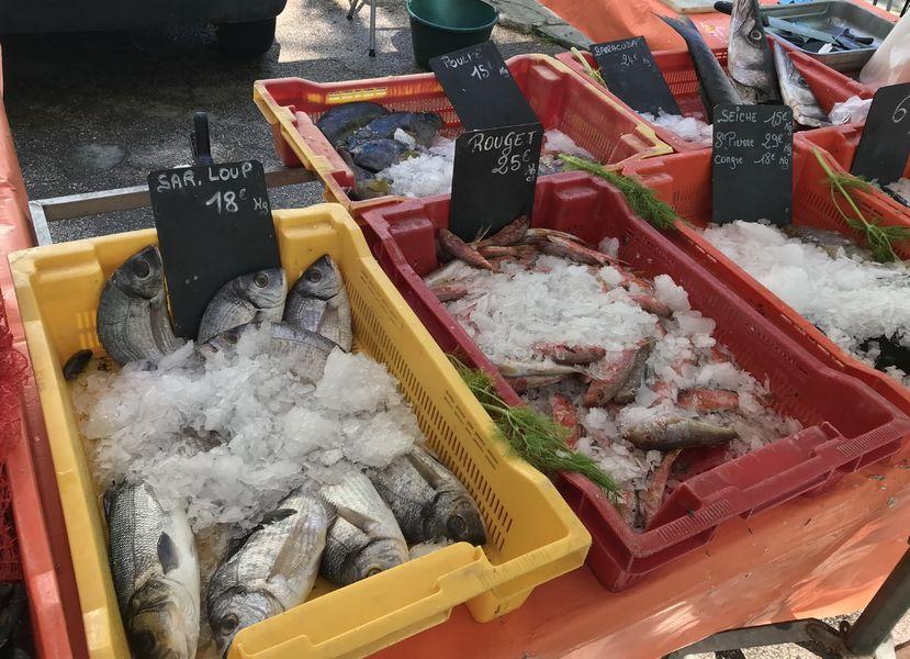Petit marché à Le Revest-les-Eaux - 6