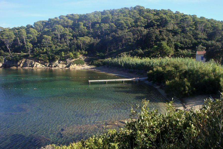 Traversée natation Port Man – Le Levant à Hyères - 0