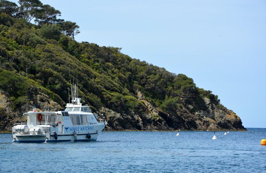 Circuit en bateau autour des îles : larguez les amarres ! à Hyères - 5