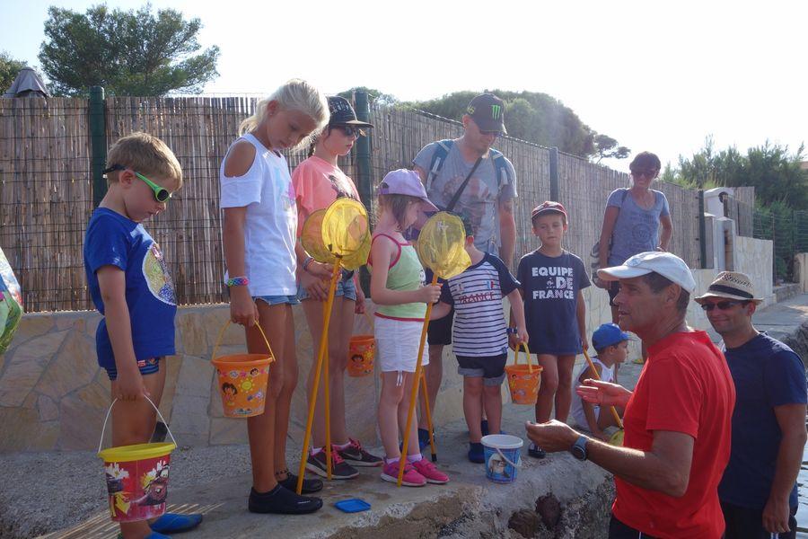 Les petits explorateurs du littoral (visite guidée spécial enfants) à Hyères - 1