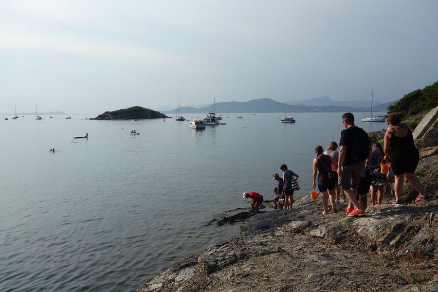 Les petits explorateurs du littoral (visite guidée spécial enfants) à Hyères - 4