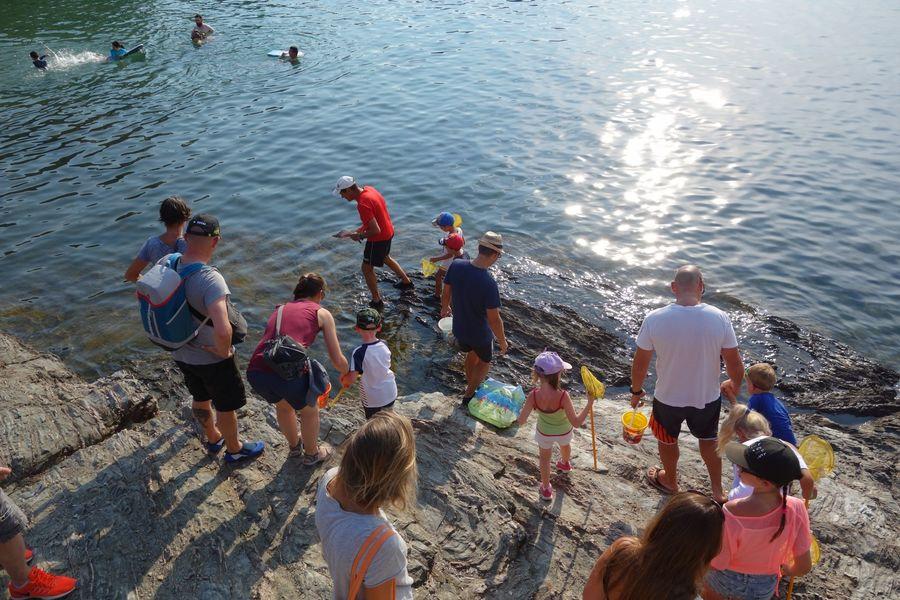 Les petits explorateurs du littoral (visite guidée spécial enfants) à Hyères - 0