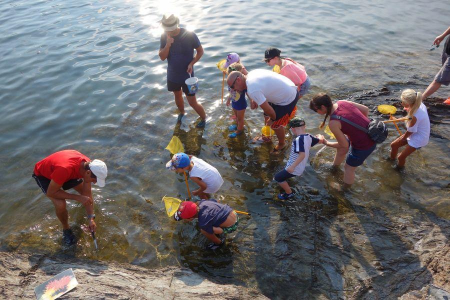 Les petits explorateurs du littoral (visite guidée spécial enfants) à Hyères - 5