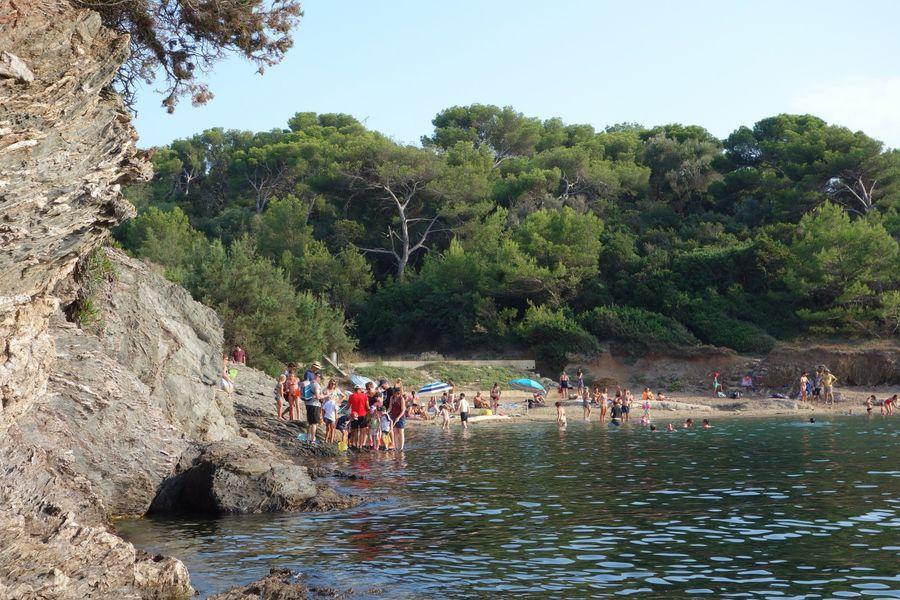 Les petits explorateurs du littoral (visite guidée spécial enfants) à Hyères - 7