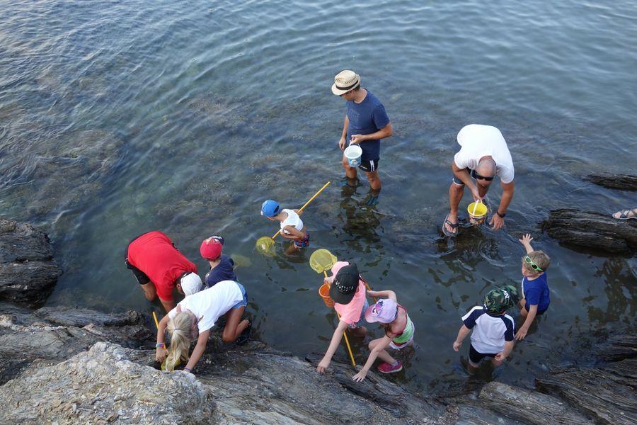 Les petits explorateurs du littoral (visite guidée spécial enfants) à Hyères - 9