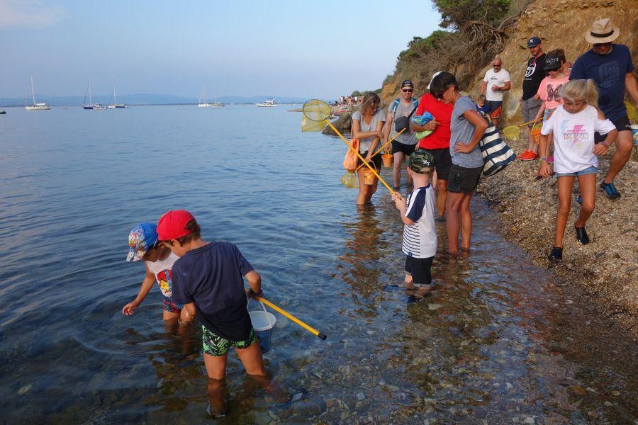 Les petits explorateurs du littoral (visite guidée spécial enfants) à Hyères - 11