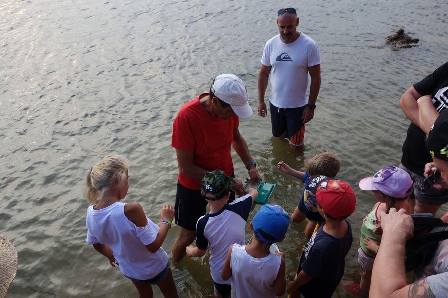 Les petits explorateurs du littoral (visite guidée spécial enfants) à Hyères - 14