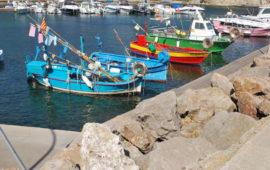 Port du Niel Hyères