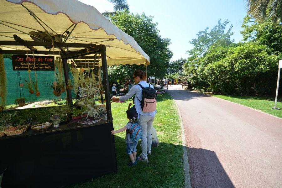 Rendez-vous aux Jardins Hyères à Hyères - 1