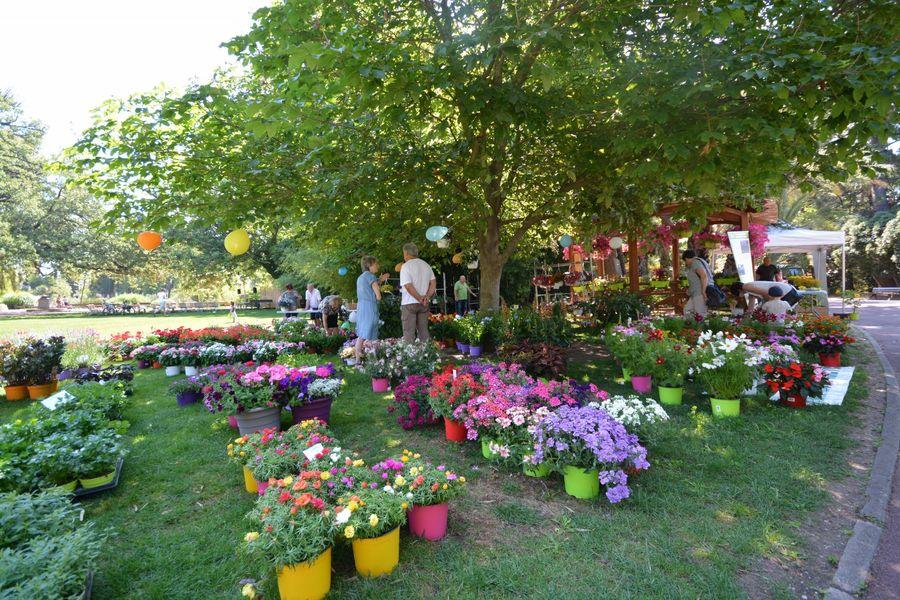 Rendez-vous aux Jardins Hyères à Hyères - 0