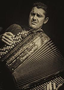 Douce joie en hommage à Gus Viseur Lampidecchia Quartet à Le Pradet - 0