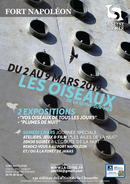 Journée spéciale «Les oiseaux de La Seyne» à La Seyne-sur-Mer - 0
