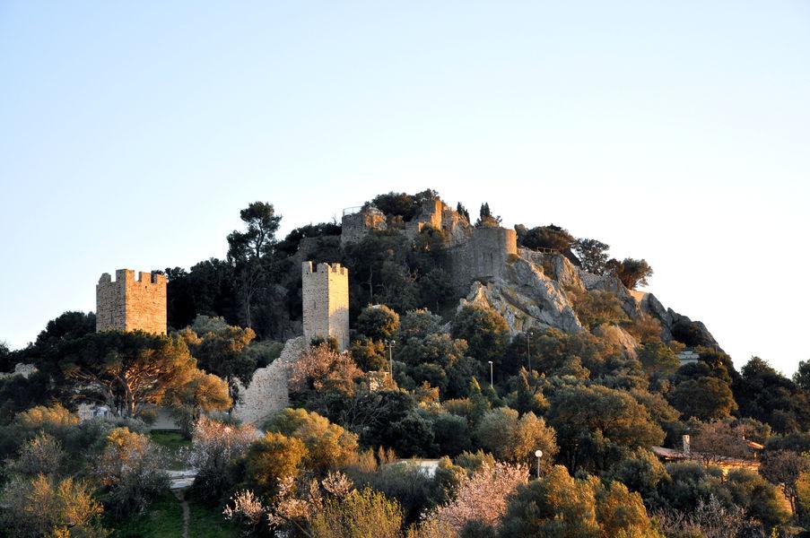 Enquête au château (visite guidée spécial enfants) à Hyères - 10