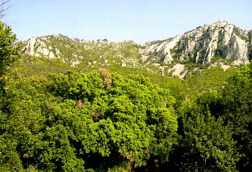 Randonnée Le Fort Faron par le Mémorial à Toulon - 0
