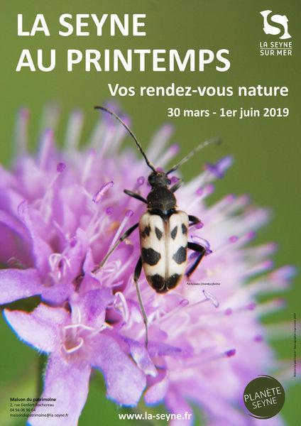 La Seyne au Printemps : conférence «Les papillons» à La Seyne-sur-Mer - 0