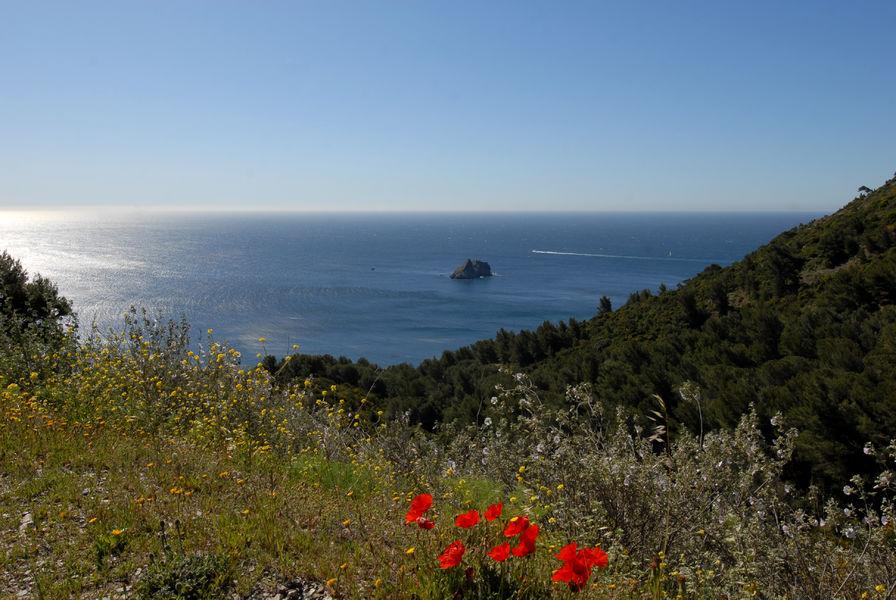Randonnée Le Cap Sicié – Notre Dame du Mai à Six-Fours-les-Plages - 0